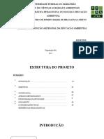 Proj Cerrado Artesanato