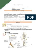 Guía de Aprendizaje N° 1-1Ciencias 4°