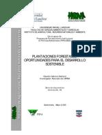 06-Plantaciones-Forestales