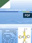 EXTRACCION DE ARN