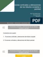Clase 9. Funciones Corticales y Alteraciones de Los Lóbulos Occipital y Parietal (1)