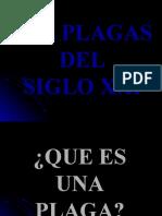PLAGAS DEL SIGLO XXI