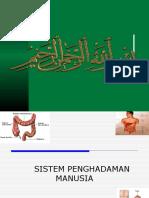 SISTEM PENGHADAMAN