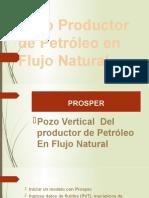 Pozo Productor de Petróleo en Flujo Natural