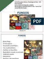 Aula 4- Fungos