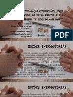 Divórcio e Separação Consensuais_seminário_cpc