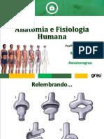 Aula 4 Anatomia e Fisiologia Humana