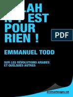 Allah n'y Est Pour Rien ! - Emmanuel Todd-1