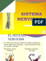 Sistemsa Nervioso