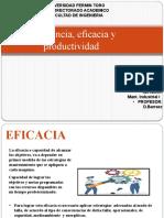 EFICIENCIA EFICACIA Y PRODUCTIVIDAD LUIS PAREDES 27.317.607