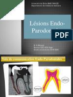 Lésions Endo Paro