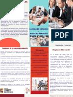 Folleto Camara de Comercio Y Registro Mercantil