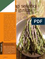 Rivistedigitali CN 2011 004 Pag 014