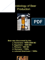 Microbiology of Beer Production