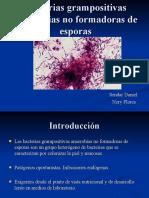 Bacterias grampositivas anaerobias no formadoras de esporas