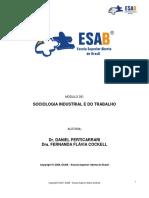 1. Sociologia Industrial e Do Trabalho