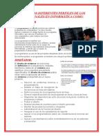 PERFILES DE LOS PROFESIONALES EN INFORMÁTICA COMO