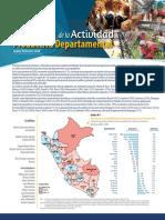 01 Informe Tecnico Indicador de La Act Productiva Dptal IV Trim 2020