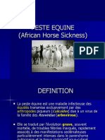 Peste Equine