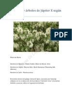 Arbustos y árboles de Júpiter X según W. Lilly
