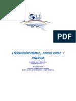 TE 1 Litigacion Penal Juicio Oral y Prueba(2)(1)