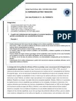 ACTIVIDAD N° 9 -GRUPO DE CHANCASANAMPA