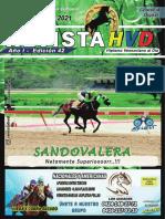 REVISTA-HVD-VERSION-1-25-JUL-21
