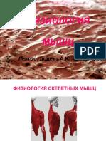 ФИЗИОЛОГИЯ СКЕЛЕТНЫХ И ГЛАДКИХ МЫШЦ XzrPsH7