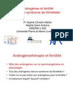 Androgènes et fertilité dans le syndrome de Klinefelter