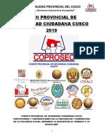 PLAN-PROVINCIAL-DE-SEGURIDAD-CIUDADANA-DEL-CUSO-PARA-EL-AÑO-2019-final