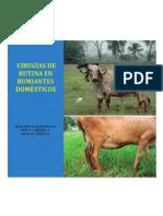 CIRUGÍAS DE RUTINA EN RUMIANTES DOMÉSTICOS (2)