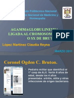 Agammaglobulinemia_ligada_X