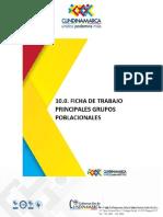 10 Anexo 10 - Ficha de Trabajo Principales Grupos Poblacionales (4) Celmira