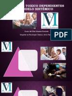 Presentacion V_M Familias Toxico dependientes Modelo sistémico