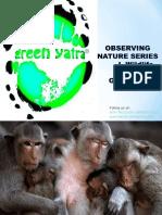 Observing Nature I- Wildlife
