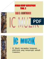 IC Muzik