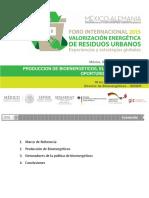 La Producción de Bioenergéticos