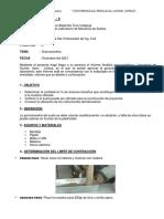 LABORATORIO DE MECÁNICA DE SUELOS II (1)