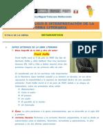 Ficha de Analisis Literario Metamorfosis