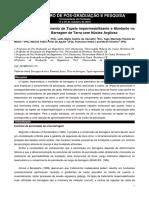 Influência-do-Comprimento-de-Tapete-Impermeabilizante-a-Montante-no-Fluxo-Estacionário-de-Barragem-de-Terra-com-Núcleo-Argiloso