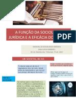 A-FUNÇÃO-DA-SOCIOLOGIA-JURÍDICA-E-A-EFICÁCIA (1)