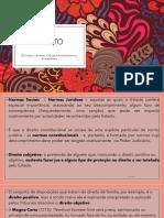 0. DIREITOS_DIMENSOES