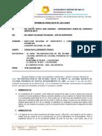 Informe de Consultas - Carretera Colonia