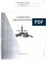 Compendio Organizacional Completo 2021