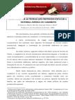 A_DISPUTA_ENTRE_TEORIAS__NATUREZA_JURIDICA_CASAMENTO-artigo-site-nov-2008