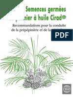 Livret-de-recommandations-prépépinière-et-pépinière-semences-germées-palmier-CIRAD