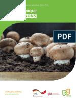 fiche_pratique_champignons