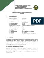 Silabo MIPE 2021-I  - CARBAJAL SEGUNDO
