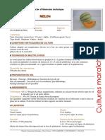FIT Melon 2014