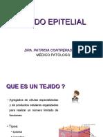 2. TEJIDO EPITELIAL